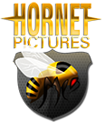 Hornetpictures